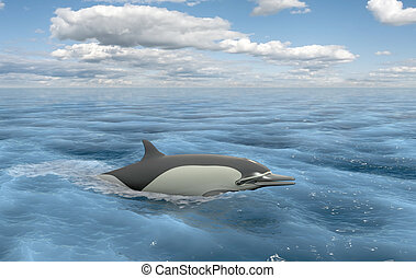 Floating dolphin