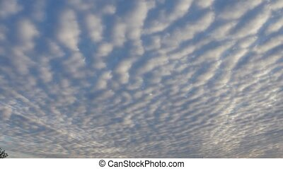 Floating feathers in blue sky with white clouds