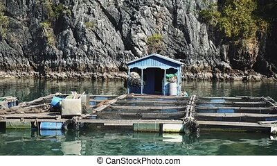 Floating Fishing Village In The Ha Long Bay. Cat Ba Island, Vietnam. 4K