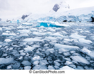 Floating ice floes, drift ice in Cierva Cove in Hughes Bay, Graham Land, Antarctica