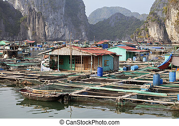 Floating village in Ha Long bay