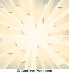 Flock birds in rays of sun.