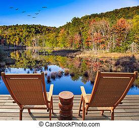 Flock of birds flies over the lake