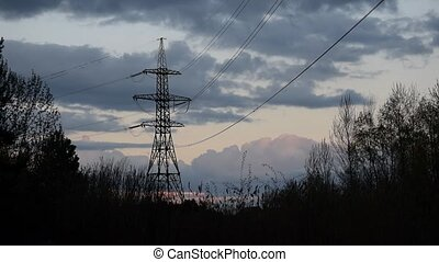Flock of birds fly and alight on transmission tower