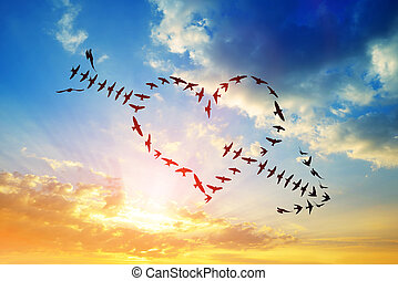Flock of birds flying in the heart and arrow formation.
