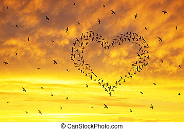 Flock of birds flying in the heart formation at sunset sky.