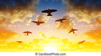 Flock of birds flying in V-formation at sunset.