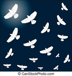 Flock of birds in flight. Night background