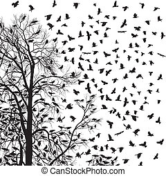 Flock of crows - illustration flock of crows over trees