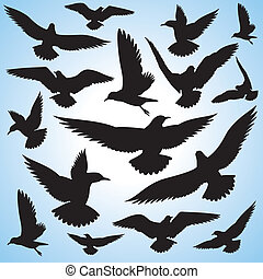 flock of flying birds and sky background