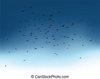 Flock of flying birds in blue sky. Vector