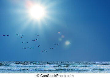 Flock of seagulls flying over breaking waves