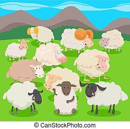 flock of sheep characters cartoon illustration - Cartoon...
