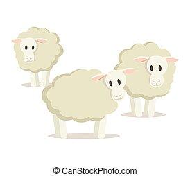Flock of three sheep. Flat vector illustration, isolated on white background.