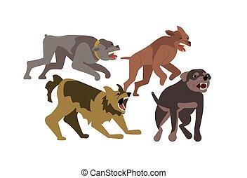 Flock of wild stray dogs