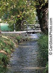flod, i parken