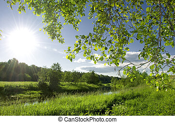 flod landskap, sommar
