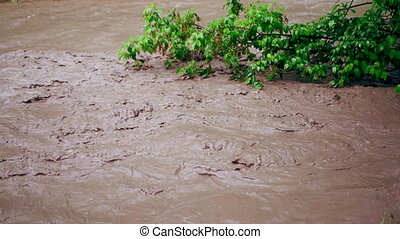 Flood after rain or hurricane. Dirty brown strong water...