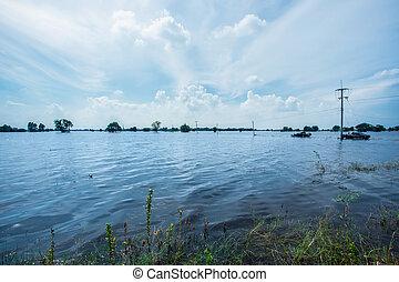 Flood, Flood Plain, Lake, Standing Water, Water