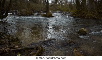 Flood of the wild river - The river flows through the forest...