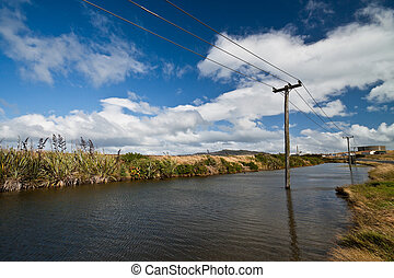 old wooden electricity pylons - flooded old wooden...