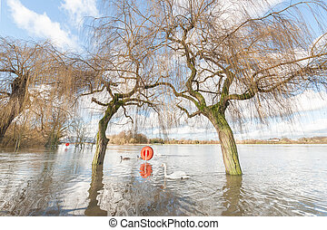 parkland flooded by the Thames river near Windsor, UK