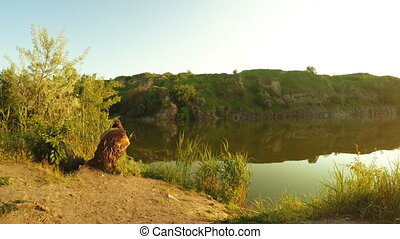 Flooded quarry - Panorama Quarry filled with water and...