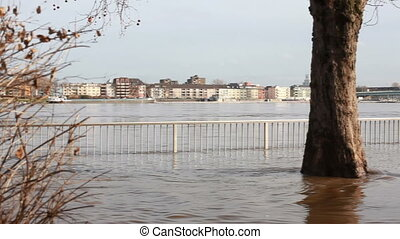 flooded street in cologne - flooded streets in cologne city...