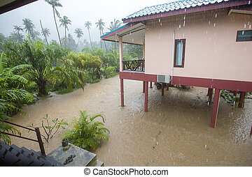 Flooded street with palm trees and house, island Koh Phangan, Thailand