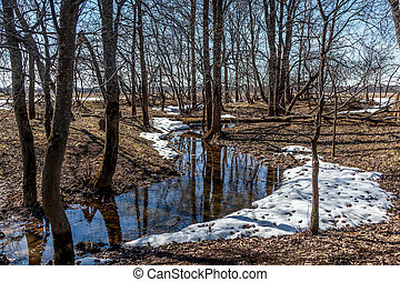 Flooded trees and frozen water in the floodplain of the river at the thaws. Spring.