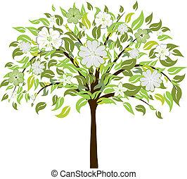 flor, árbol
