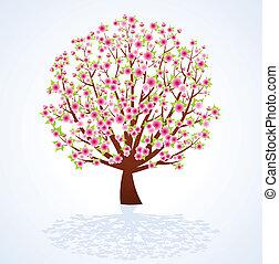 flor, árvore cereja