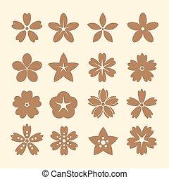 flor, ícones, para, padrão