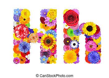 flor, alfabeto, -, isolado, carta h, branca