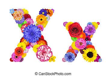 flor, alfabeto, -, isolado, carta x, branca