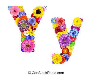 flor, alfabeto, -, isolado, carta y, branca
