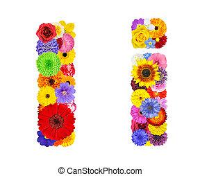 flor, alfabeto, -, isolado, letra, branca
