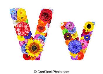 flor, alfabeto, -, isolado, letra, v, branca