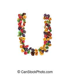 flor, alfabeto, isolado, u, secado, fundo, branca