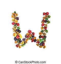 flor, alfabeto, w, isolado, secado, fundo, branca