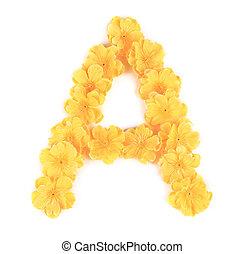 flor, alphabet., letra
