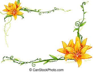 flor amarilla, y, vides