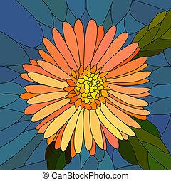 flor anaranjada, aster.