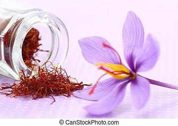 flor, arriba, azafrán, secado, cierre, especia