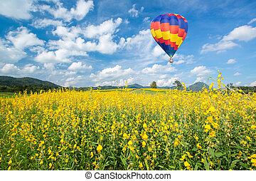flor azul, campos, sobre, céu, amarela, ar, quentes, contra, balloon
