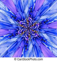 flor azul, centro, collage, patrón geométrico