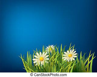 flor azul, grama verde, fundo
