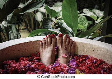flor, baño, pétalos, tina