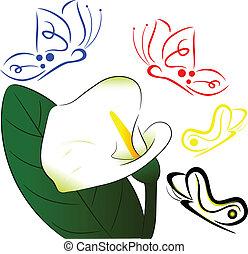 flor blanca, y, mariposa