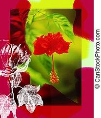 flor, blossum., rojo